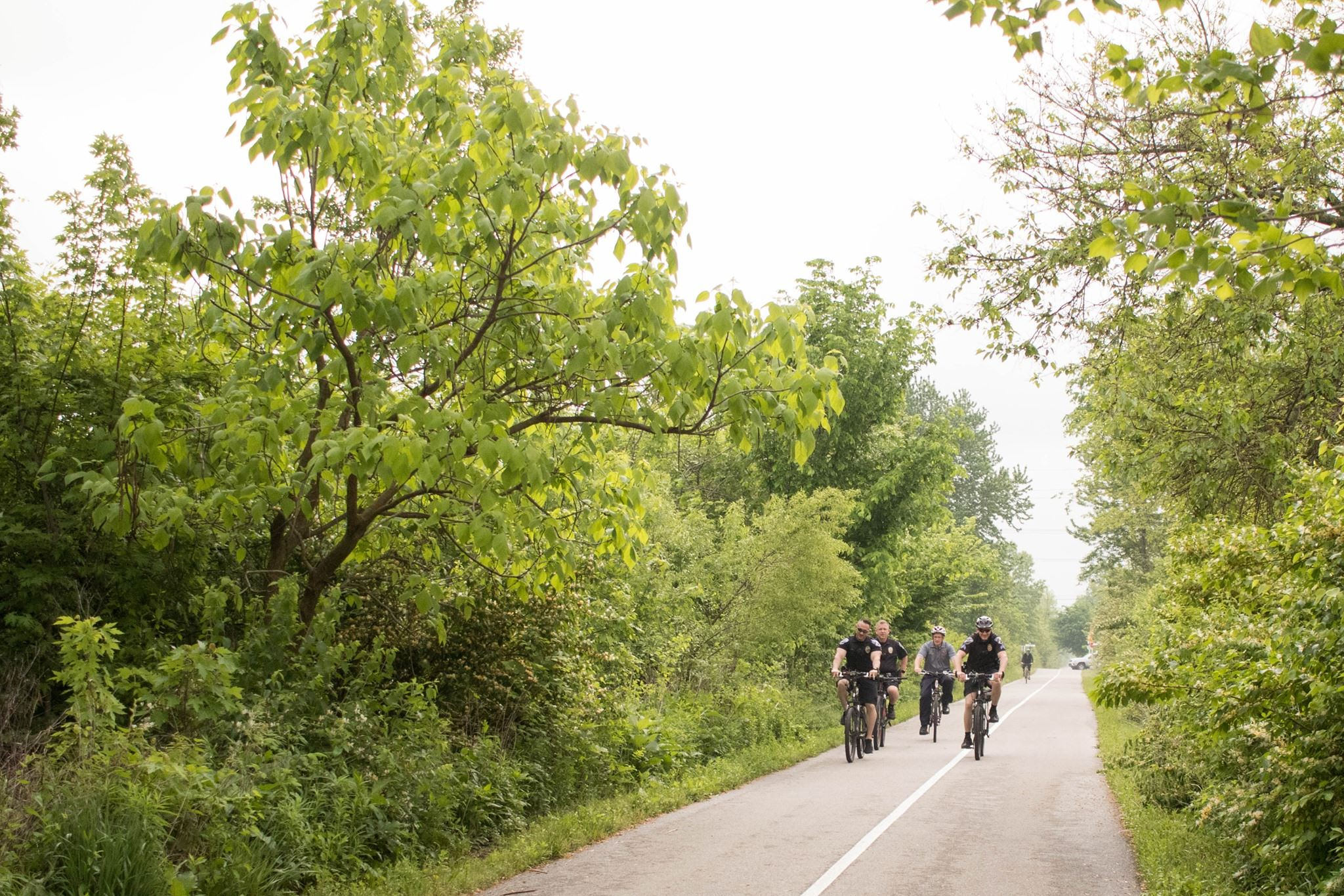Bicycle Riders Riding Along a Tree Lined Path